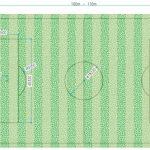 Kích thước sân bóng đá 5, 7, 11 người tiêu chuẩn Việt Nam và quốc tế